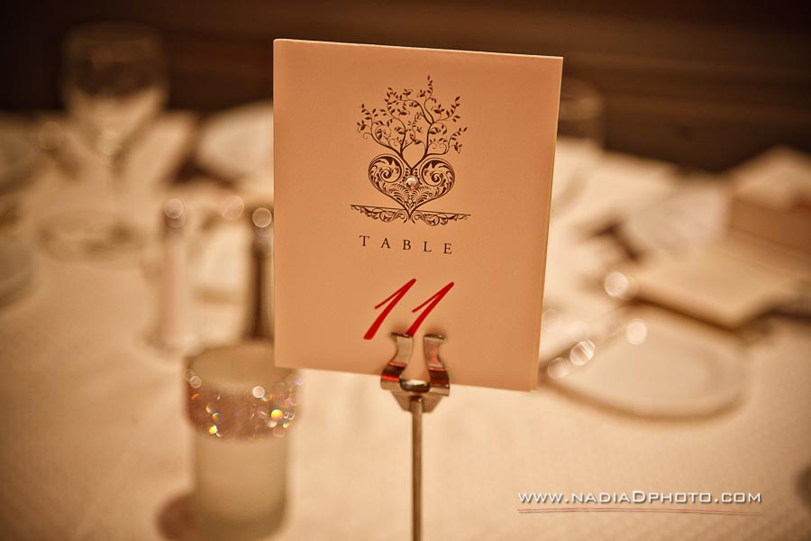 Hindu Jewish Wedding Atlanta | Nadia D Photo 91