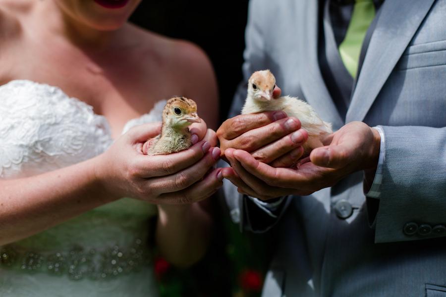 Boho Farm Jewish Wedding   Arius Photography 21