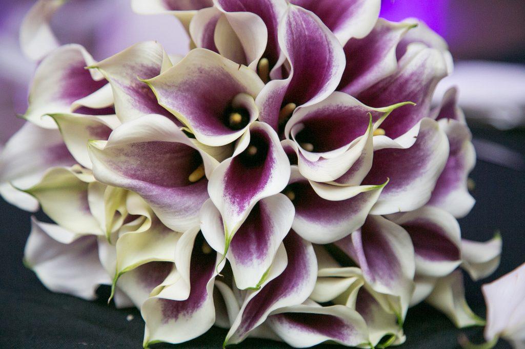 elegant-miami-jewish-wedding-jeff-kolodny-photos-18